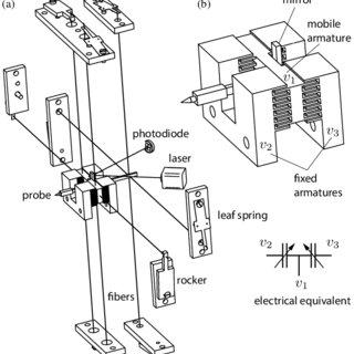 Elements of the force sensor. (a) Fiber suspension to