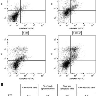 Evaluation of oxidative stress in HaCaT cells treated with