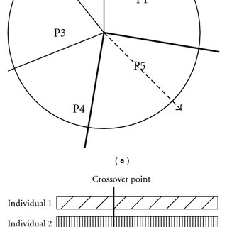 Roulette wheel selection method (a) and crossover strategy