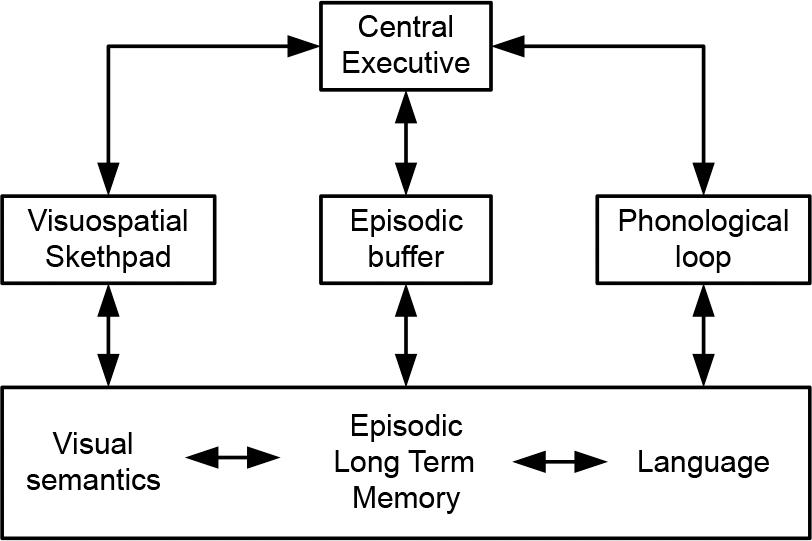 Block diagram to represent Baddeley's model of working