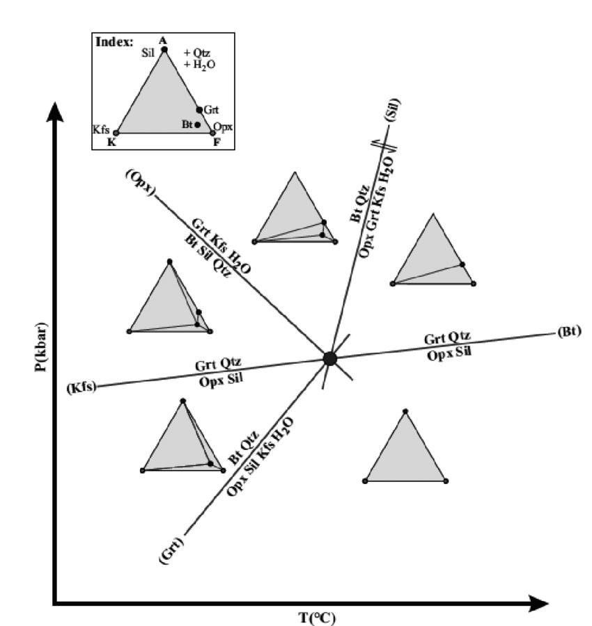 Petrogenetic grid based on Schreinmaker's method in the