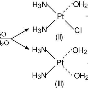 Binding of cis-platinum to guanine in DNA macromolecule a