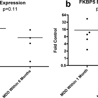 Expression of FKBP4 (a) and FKBP5 (b) in the CNTN groups