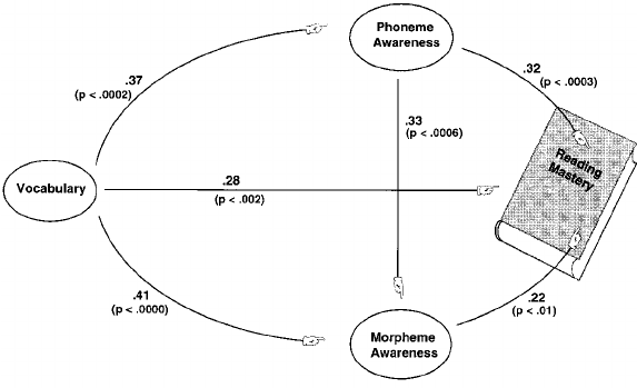 Path analysis of the results of Experiment 2, showing the