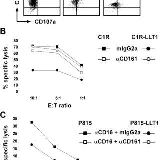 (PDF) Cutting Edge: Lectin-Like Transcript 1 Is a Ligand