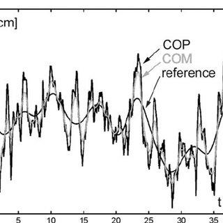 Standing posture. COP Center of pressure; COM center of