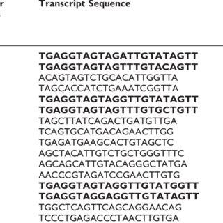 Venn Diagrams depict the difference of miRNA transcript