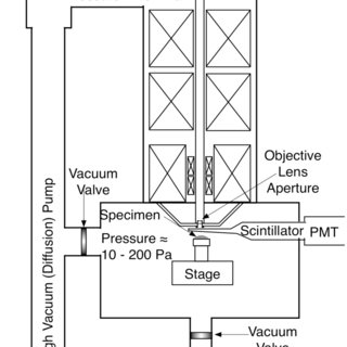 (PDF) The Development of Variable Pressure Scanning