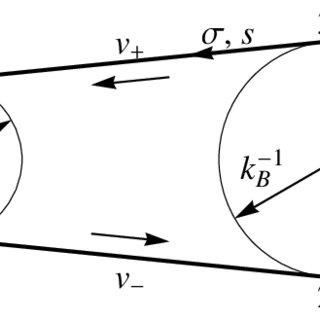 (PDF) Modeling the Dynamics of a Flexible Belt Drive Using
