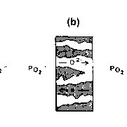 Operating principle of (a)-solid oxide fuel cell (SOFC