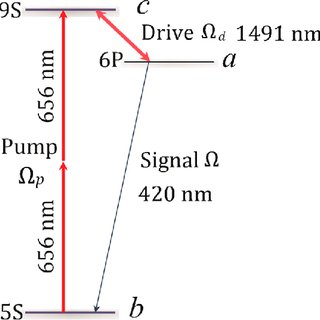 Temporal profiles of the pump pulse (short dashed green