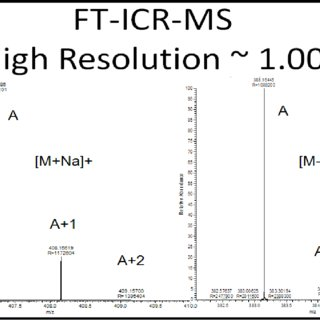 Comparison of LC-MS chromatograms of human urine sample