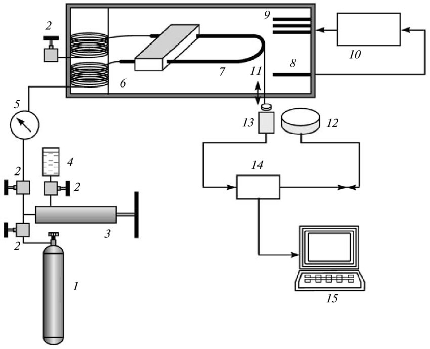 Schematic diagram of the experimental setup: (1) gas