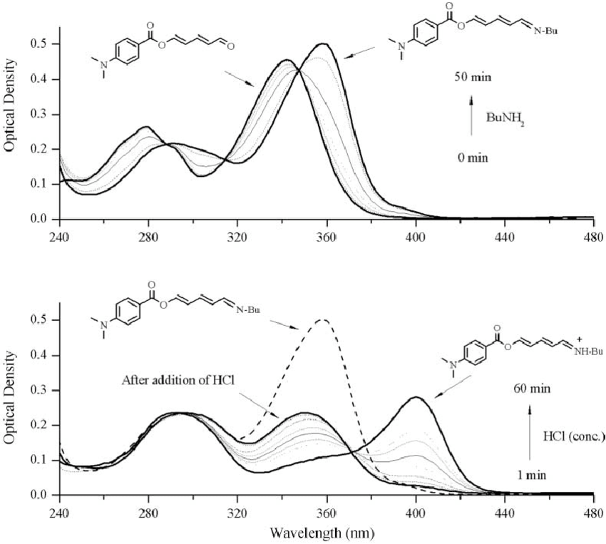 Chemical modifications of 1 in non-aqueous acetonitrile