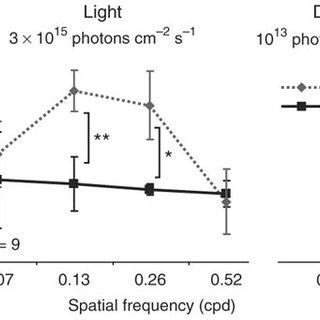 Schematic diagram illustrating photoreception driving