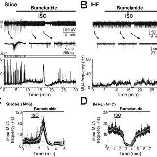Chloride accumulation, neuronal network facilitation and