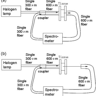 Optical properties of the 10 % intralipid solution: (a