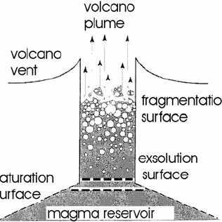 Types of seismic signals (velocity, vertical component