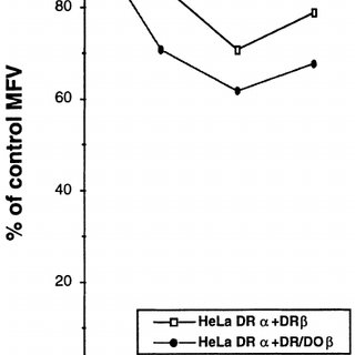 Expression of endogenous HLA-DO β in normal and mutant B