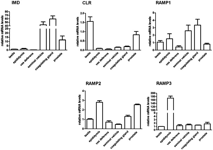 The relative gene expression of intermedin (IMD) and its