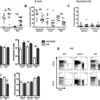 (PDF) Development of human CD4+FoxP3+ regulatory T cells