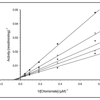 Determination of the Size of SvAS by Gel Filtration