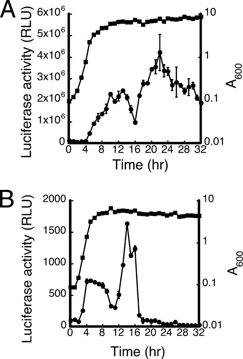 medium resolution of activity of fenp nha cm broth was inoculated with b subtilis download scientific diagram
