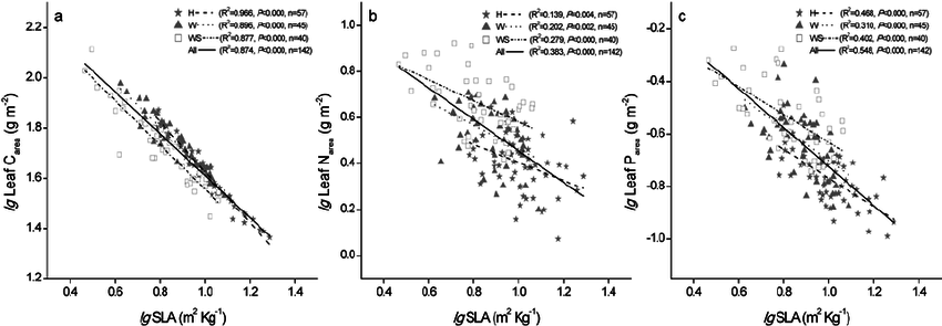 Relationships between SLA and leaf area-based leaf C, N