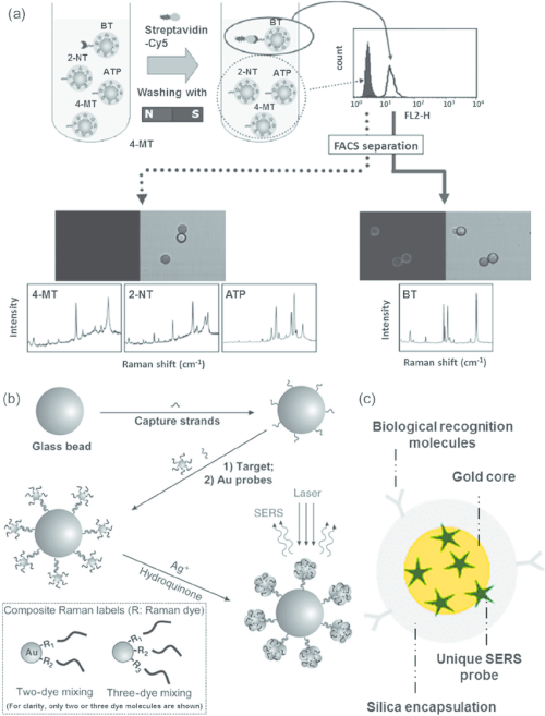 small resolution of  a sers barcode microsphere based suspension assay b suspension assay