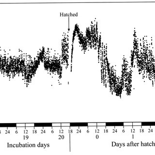 (PDF) Development of Heart Rate Circadian Rhythm in Chickens