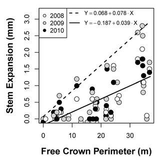 The effects of tree diameter (DBH), basal area (BA), basal