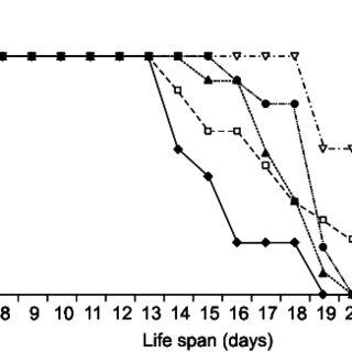 (PDF) Recombinant adeno-associated virus mediated gene