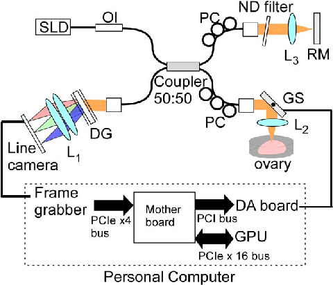 Schematic of spectral domain OCT. SLD, superluminescent