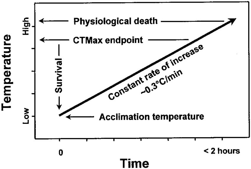Determination of the critical thermal maximum (CTmaximum