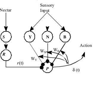 (PDF) An Interactivist-Constructivist Approach to