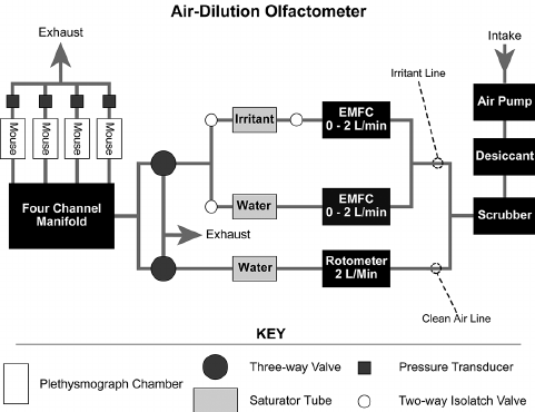 Diagram of the computer-controlled air-dilution