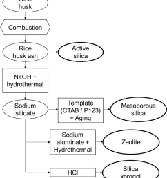 preparation and synthesis of active silica mesoporous silica silica xerogel and zeolite from rh [ 850 x 979 Pixel ]
