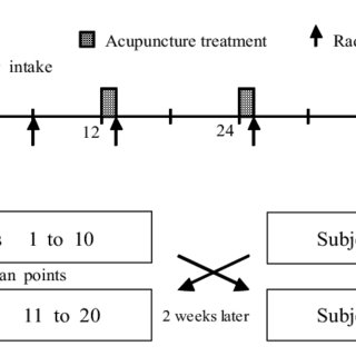 (PDF) Crossover Clinical Trial to Determine the Effect of