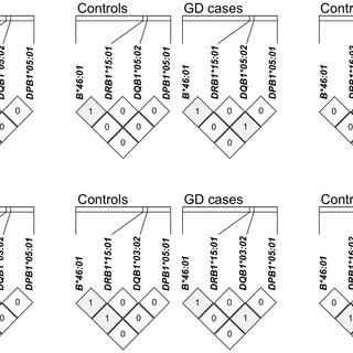 (PDF) Comprehensive Genotyping in Two Homogeneous Graves