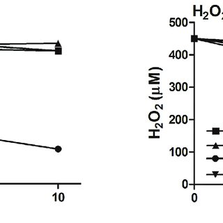Working model for pathway for bacterial lipoic acid