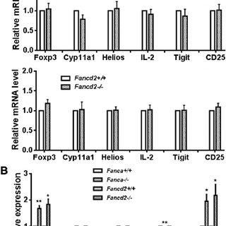 FA Treg cells show lower suppression potential . (A) FA