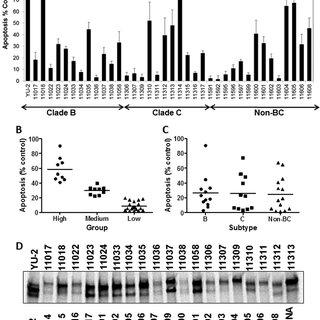 Determination of neutralizing antibody sensitivity of