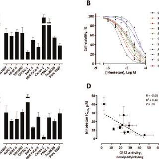 (PDF) Carboxylesterase 2 as a Determinant of Response to
