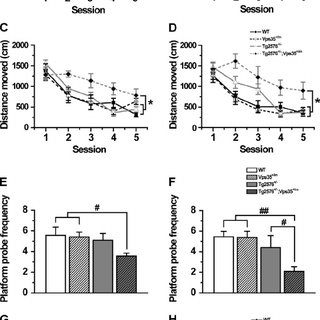 (PDF) VPS35 haploinsufficiency increases Alzheimer's
