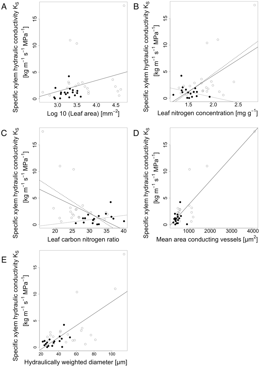 hight resolution of ks as a function of a leaf area p filled black dots represent species of evergreen leaf habit and empty dots represent species of deciduous leaf habit