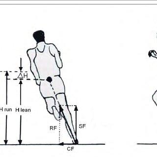 (PDF) BIOMECHANICAL ANALYSIS OF RUNNING IN THE HIGH JUMP