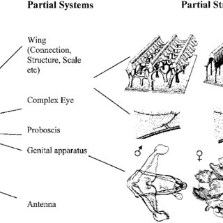 (PDF) Bioprospecting