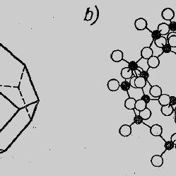Electrophorogram of bacteriophage fractions, separated by