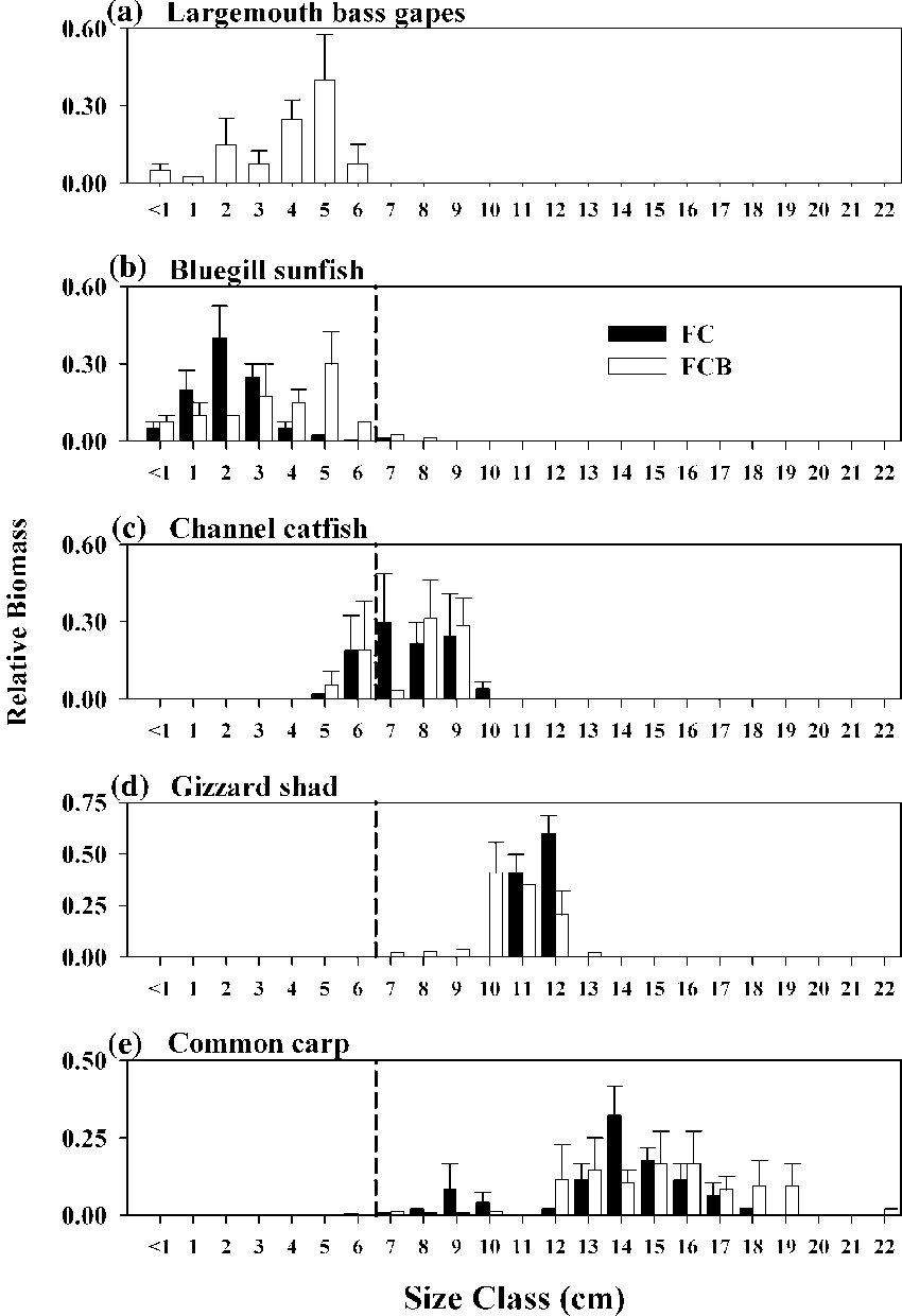 hight resolution of size distributions of largemouth bass gapes and body depths of fish species in ponds after the