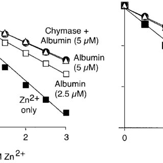 (PDF) Albumin is a substrate of human chymase. Prediction